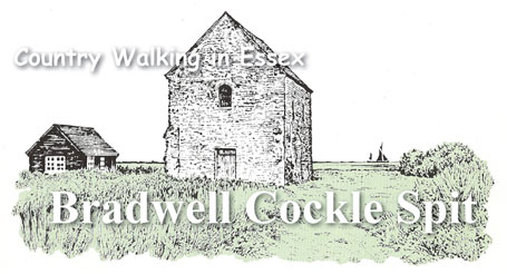 Country Walking in Essex - Bradwell Cockle Spit
