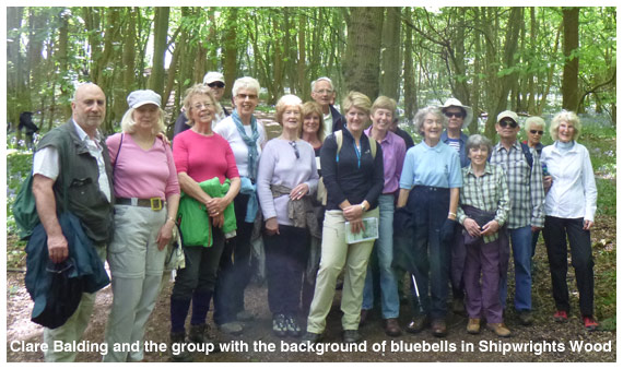 Clare Balding with the walking group on 6th May 2014 with the background of bluebells in Shipwrights Wood