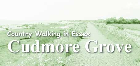Country Walking in Essex: Cudmore Grove