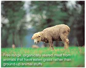 Free range, organically reared meat from animals that have eaten grass rather than ground-up animal stuffs