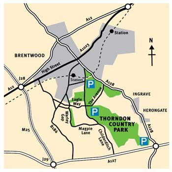 Thorndon Country Park location
