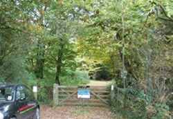 The entrance to Thrift Wood