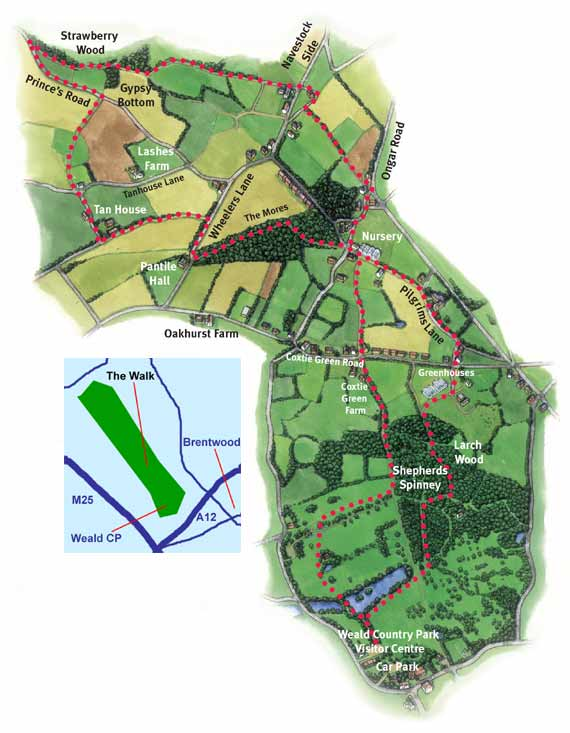 Weald and Navestock Wildside Walk