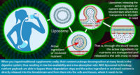 What-are-Liposomes.jpg