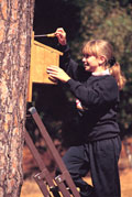 Girl with nest box