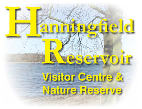 Hanningfield Reservoir - Nature Reserve and Visitor Centre