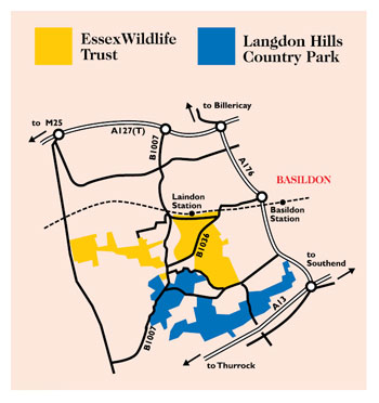 Langdon Hills - Country Park, Nature Reserve and Visitor Centre location