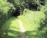 Roman River Valley footpath