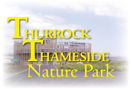 Thurrock Thameside Nature Park and Visitor Centre