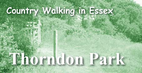 Thorndon Country Park Wildside Walk
