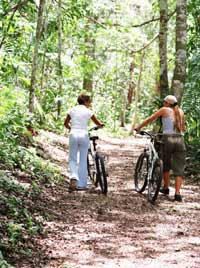 Walking, Cycling - join the green gym