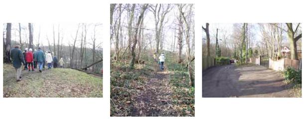 Coombe Wood Walk 3 A steep hill andLake Drive