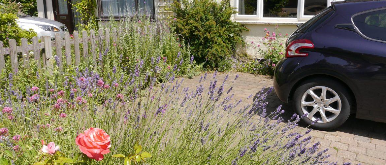 Eileen Pecks neighbours front garden