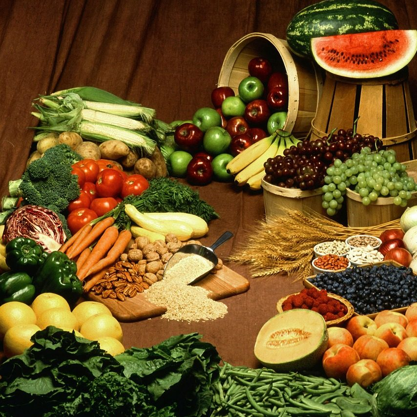 plant-based diet for wellbeing