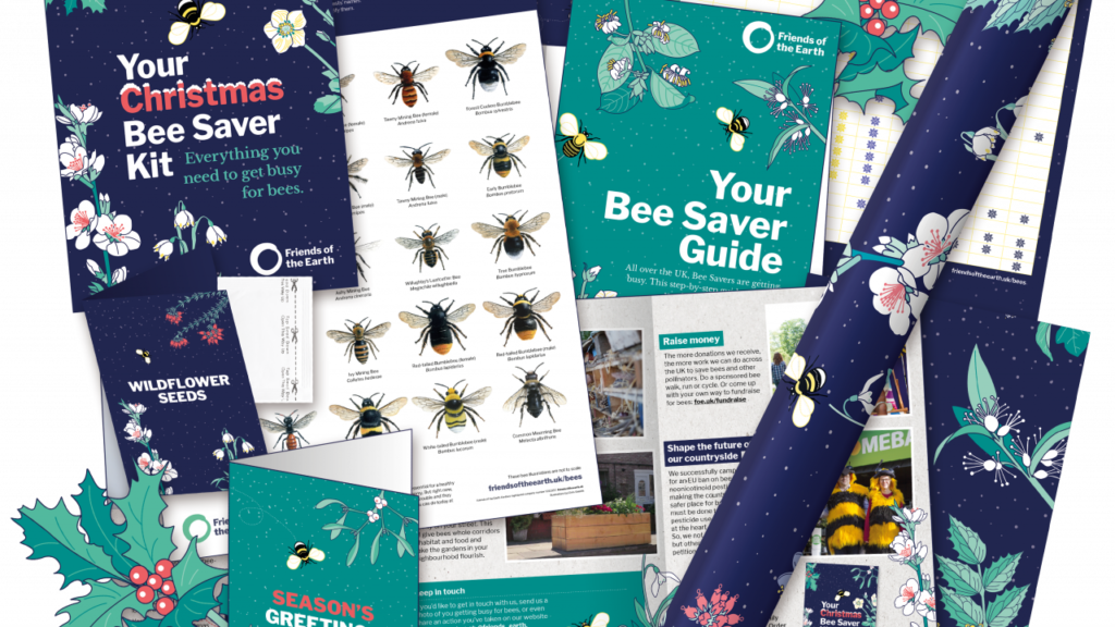 Friends of the Earth Christmas Bee Saver Kit