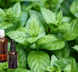 Relieve tooth pain naturally with pepper mint oil