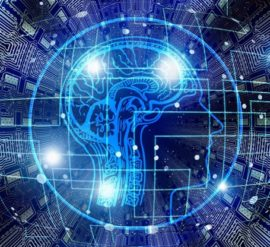 nootropics or brain supplements