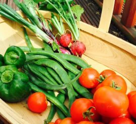 The Grow-Your-Own support Project could help you grow food like this