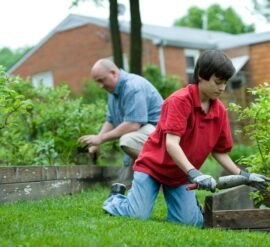 Amazing ways gardening benefits your health and wellbeing